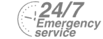 24/7 Emergency Service Pest Control in Wimbledon, SW19. Call Now! 020 8166 9746